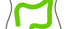 Dieses Bild zeigt das Logo des Darmkrebszentrums der Hochtaunus-Kliniken.