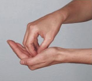 Dieses Bild zeigt Schritt 2 des Händewaschens. Waschen der Handflächen.